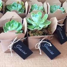 Image result for regalos originales con plantas