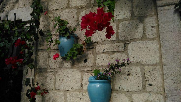Baçe düzenleme