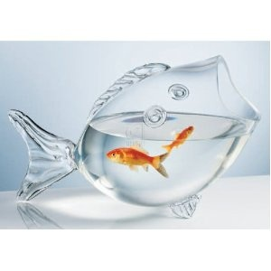 Fish in a fishFish Shape, Stuff, Fish Tanks, Shape Bowls, Clear Fish, Fishbowl, Products, Shape Fish, Fish Bowls