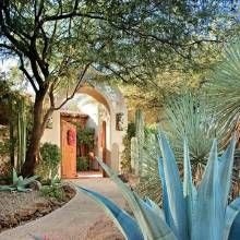 Hacienda style landscaped house with blue agave adds drama near a path to the home's front courtyard, while a mesquite tree (background) frames its arched entry.