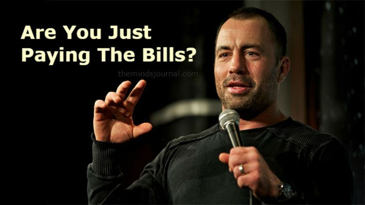 Joe Rogan: Do What You Love, Because Society Is A Trap And Work Is Meaningless - http://themindsjournal.com/joe-rogan/