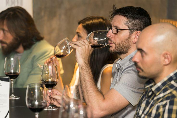 Catas de vino Valdepeñas