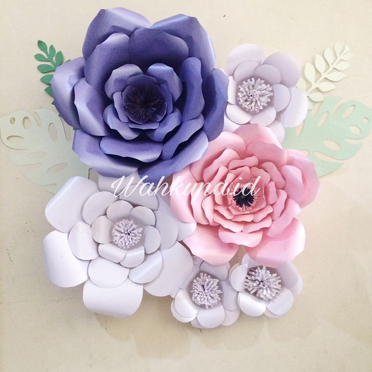 Paper flowers on my wall