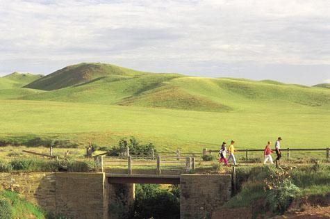 Greenscape @ Clare Valley - South Australia