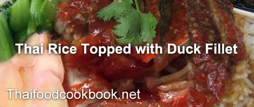 How to make Thai Rice Topped with Duck Fillet recipes.....  http://thaifoodcookbook.net/index_en.php