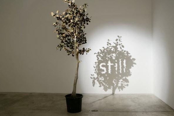 shadow art still