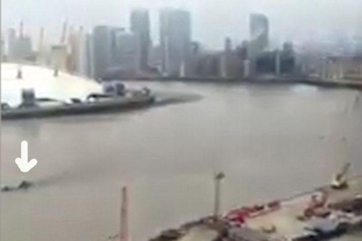 Лох-Несское чудовище заплыло в Темзу. Очевидец снял на видео существо внушительных размеров, которое на короткое время появилось на поверхности реки