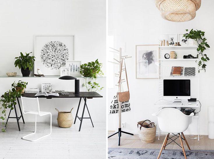 plants-creative-work-space-06