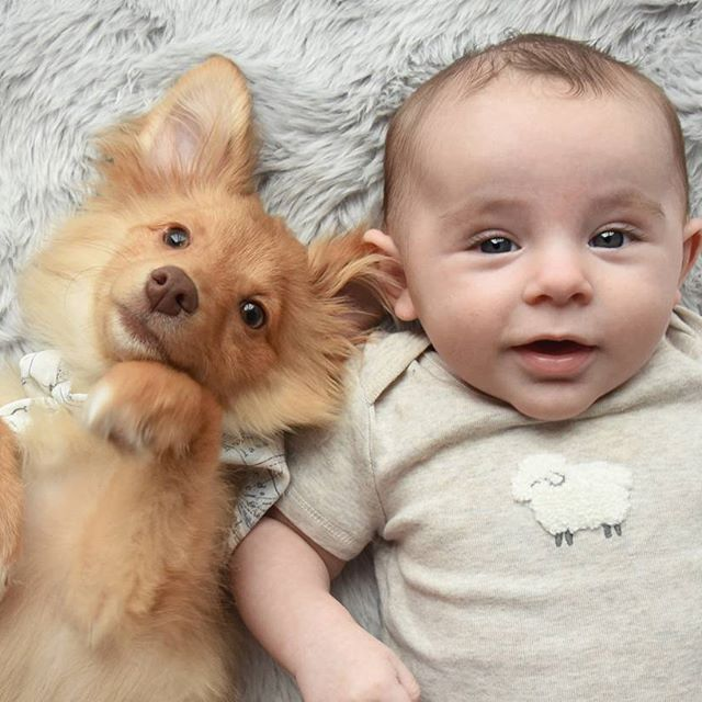 Double trouble 🐶👶🙈💕 #puppyandbaby #babyandpuppy #babylifestyle