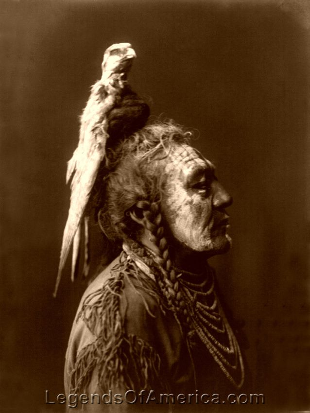 a description of a shaman or medicine man P 38 shaman, the medicine man the shaman, to whom all the indians looked for wisdom, was their counsellor in sickness and health at all times he was looked to to.