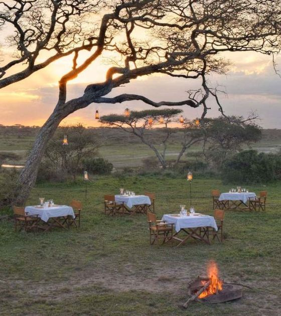 Serengeti Under Canvas | The ultimate in luxury camping