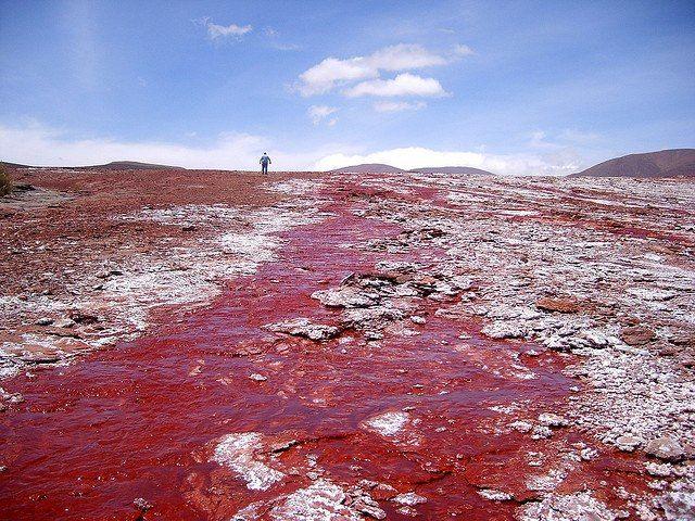 La Laguna Roja tiene ese nombre precisamente por el color de su agua. Se ubica en la comuna de Camarones, región de Arica y Parinacota, en e...