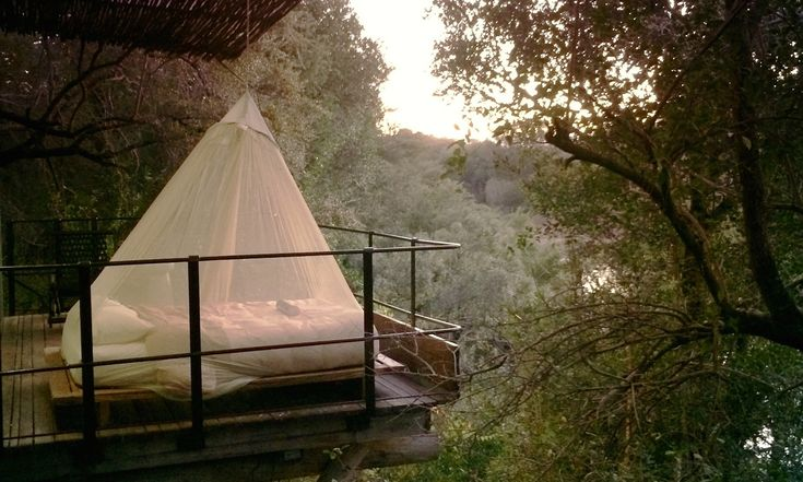 Step inside a luxury treehouse hotel located in the middle of the Kruger National Park in South Africa.