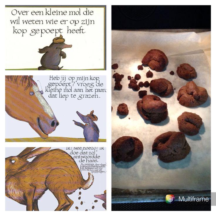 """Tip van voorleesjuffie!: Poep koek maken bij het boek """"over een kleine mol die…"""