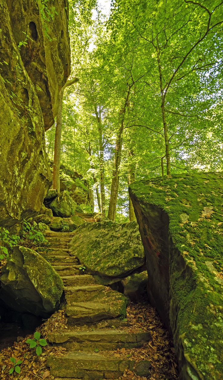 Travel America The American Experience| Serafini Amelia| Trail in Shawnee National Forest, Illinois, USA