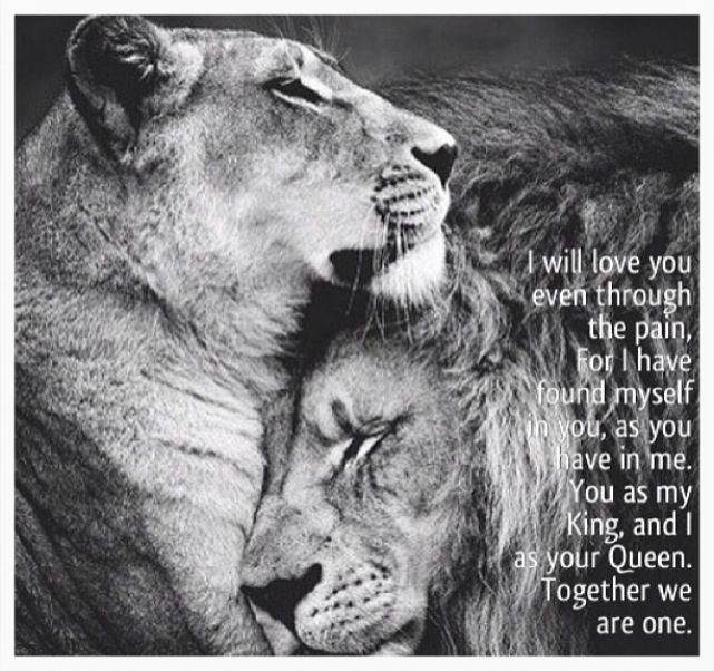 A queen always protects her king so make her feel like the queen you need and want