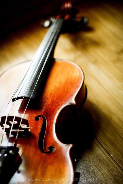 "{The violin sings but the fiddle dances.""}   anonymous"