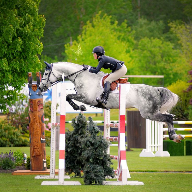 live-to-ride-love-to-ride:  hannahequusphotography:  Carly Anthony & Caspar T competing in the High A/O Jumpers at Thunderbird Show Park...