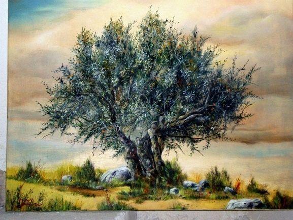 Olive Tree: Paintings Realism Oil Landscape Pit Kio