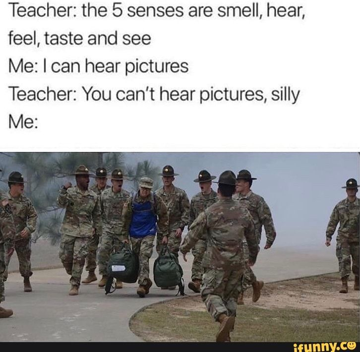Teacher The 5 Senses Are Smell Hear Feel Taste And See Me I Can Hear Pictures Teacher You Can T Hear Pictures Silly Me Ifunny Funny Army Memes Military Jokes Army Humor