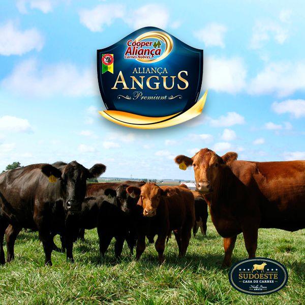 Com início em 1998, a CooperAliança Carnes Nobres é a única certificada no Paraná pela Associação Brasileira de Angus, além de contar com 111 associados e mais de 80 pontos de venda no estado. E você pode encontrar os produtos da Aliança aqui na Sudoeste. Venha hoje mesmo conferir!