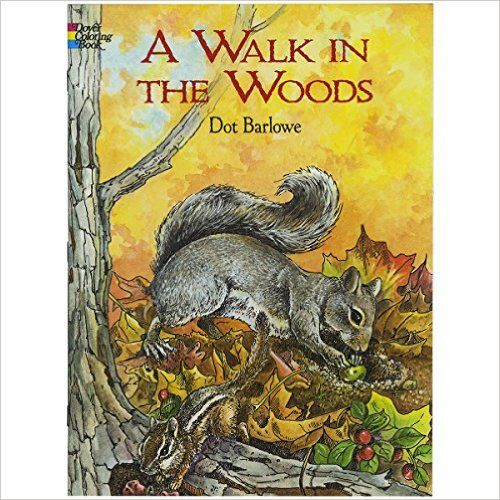 Adult Coloring Books Animals A Walk In The Woods Forest Squirrels Painting Ideas