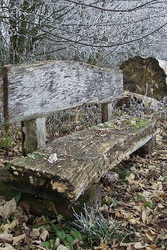 love this weathered old bench..