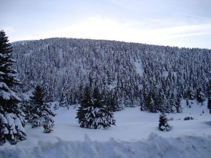 Kalavryta, Greece, a perfect winter destination! http://goo.gl/yUeD7k #travel #greece #winter