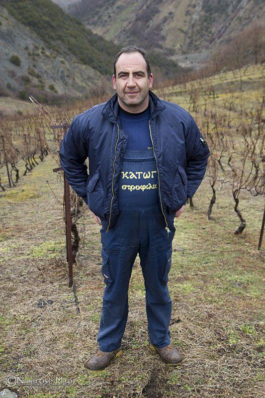 Katogi wineyard Metsovo Epirus