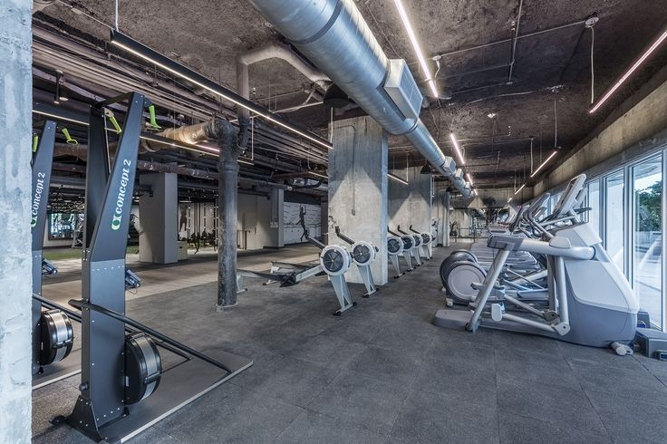 Tour 1 Hotel South Beach's new Spartan Gym - Curbed Miamiclockmenumore-arrownoyes : Sweet ropes