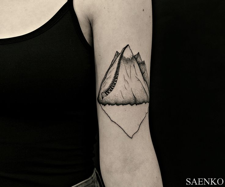 mountains tattoo  #tattoo #tattoos #tattooartist #dmitrysaenko #blxckink  #blackworkers #dotwork #linework #darktattoo #blackwork #graphic #ink #btattooing #tattoodo #equilattera #ukrainetattoo #shell #blwart #art
