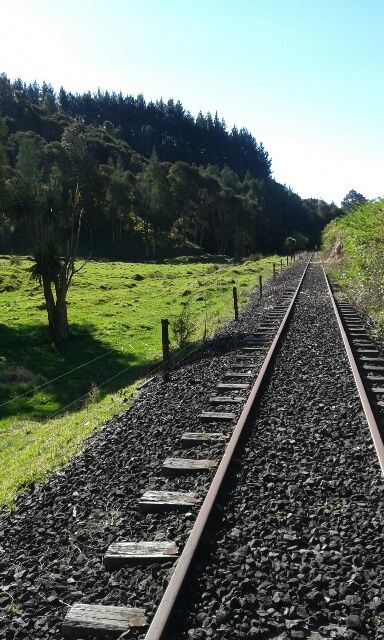 Awakeri Rail Adventures crosses over beautiful lush farmland and beside exotic native bush carefully preserved by the Department of Conservation (DOC ) in Whakatane New Zealand.