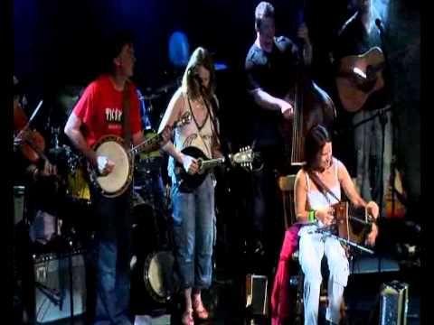 Blackbird -Sharon Shannon