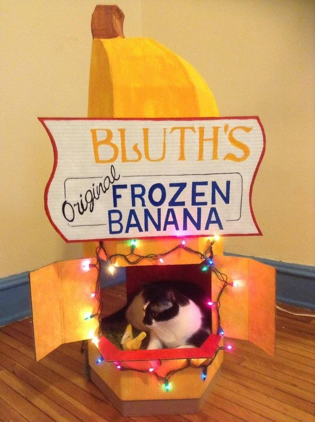 "The best cat bed ever??? | 21 DIY Ways To Turn Your Life Into ""Arrested Development"""