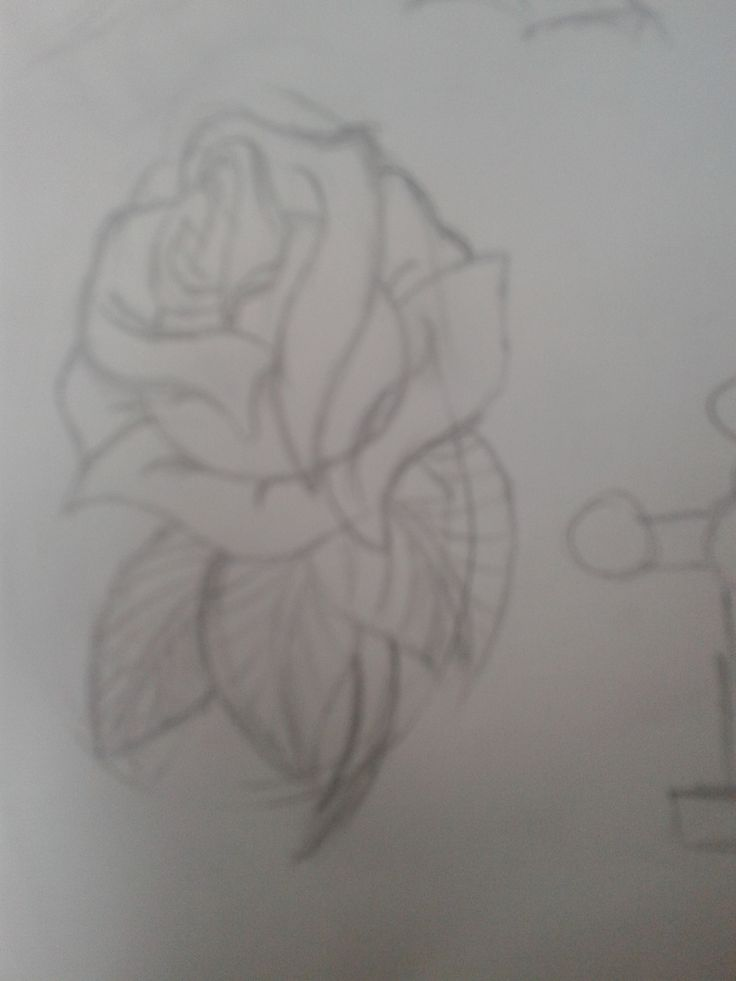 sketch for tattoo...
