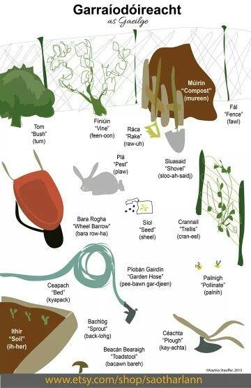Garraíodóireacht - Gardening