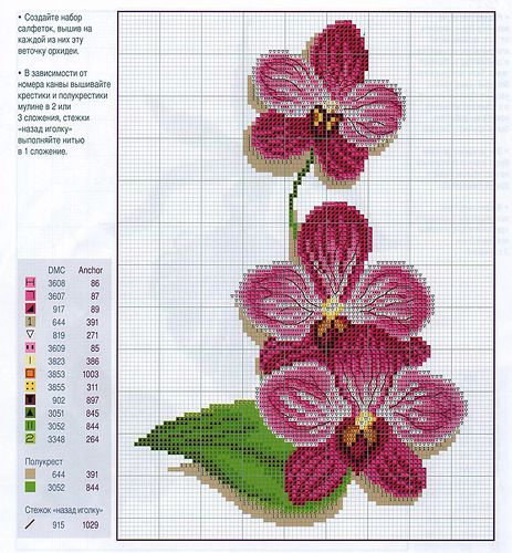 orchid cross stitch pattern