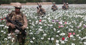The Spoils of War: Afghanistan's Multibillion Dollar Heroin Trade – Political Junkie News Media
