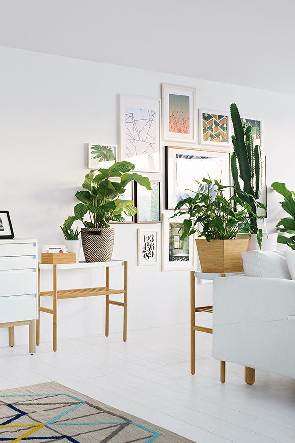 les 25 meilleures id es de la cat gorie satsuma ikea sur pinterest supports et tables. Black Bedroom Furniture Sets. Home Design Ideas