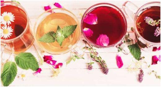 20 Flavor Tea Sampler Gift: Top Reasons To Buy One