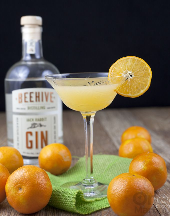 Jack & Jill {a gin clementine cocktail} | I think about making a cocktail with them. I snuck a few of those little beauties and saved them for this gin clementine cocktail. Good thing too, because it was lovely. @onemartini