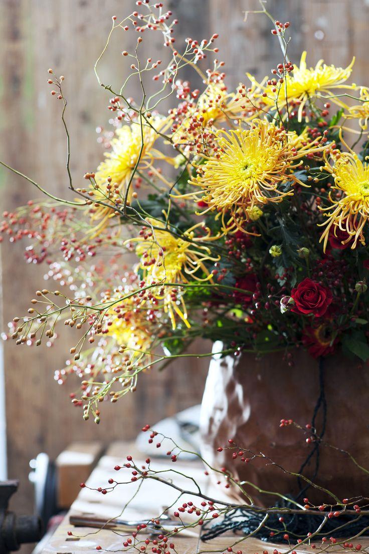 #Herbstfieber mit #Chrysanthemen ! | #BBH
