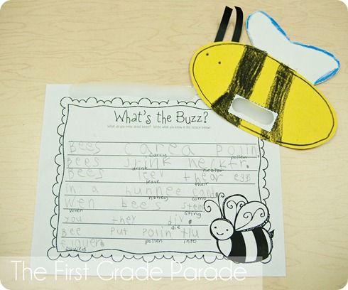 Vanishing of the bees essay writer