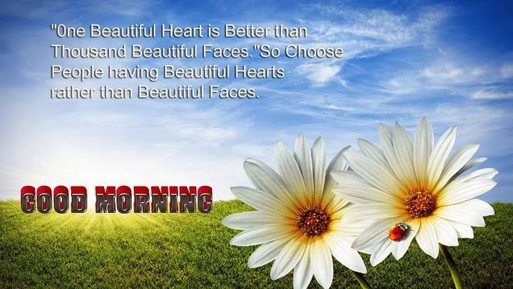 Good Morning images to start a day – Gud morning images