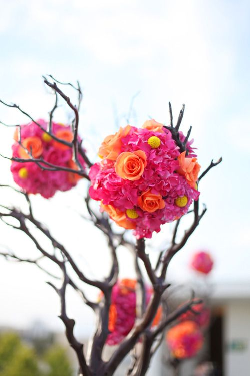 twiggy contrast with orange and pink pomanders
