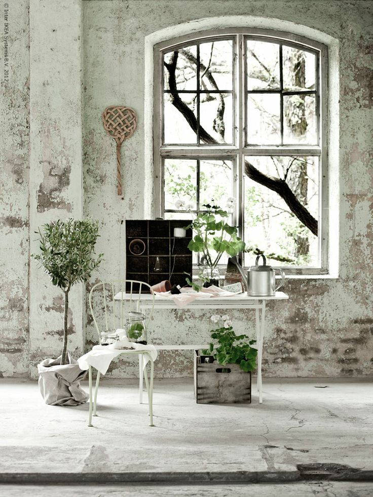 .Plants Can, Exposed Bricks, White Spaces, Modern Industrial, Windows, Country Looks, Expo Bricks, Vintage Home Decor, White Room