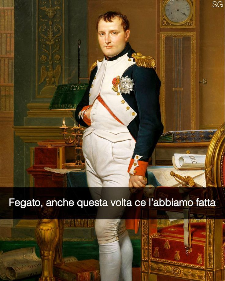 L'imperatore Napoleone nel suo studio - Jacques-Louis David (1812) Snapchat: stefanoguerrera #stefanoguerrera #seiquadripotesseroparlare