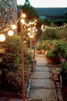 String lights on poles pushed into pots around the...