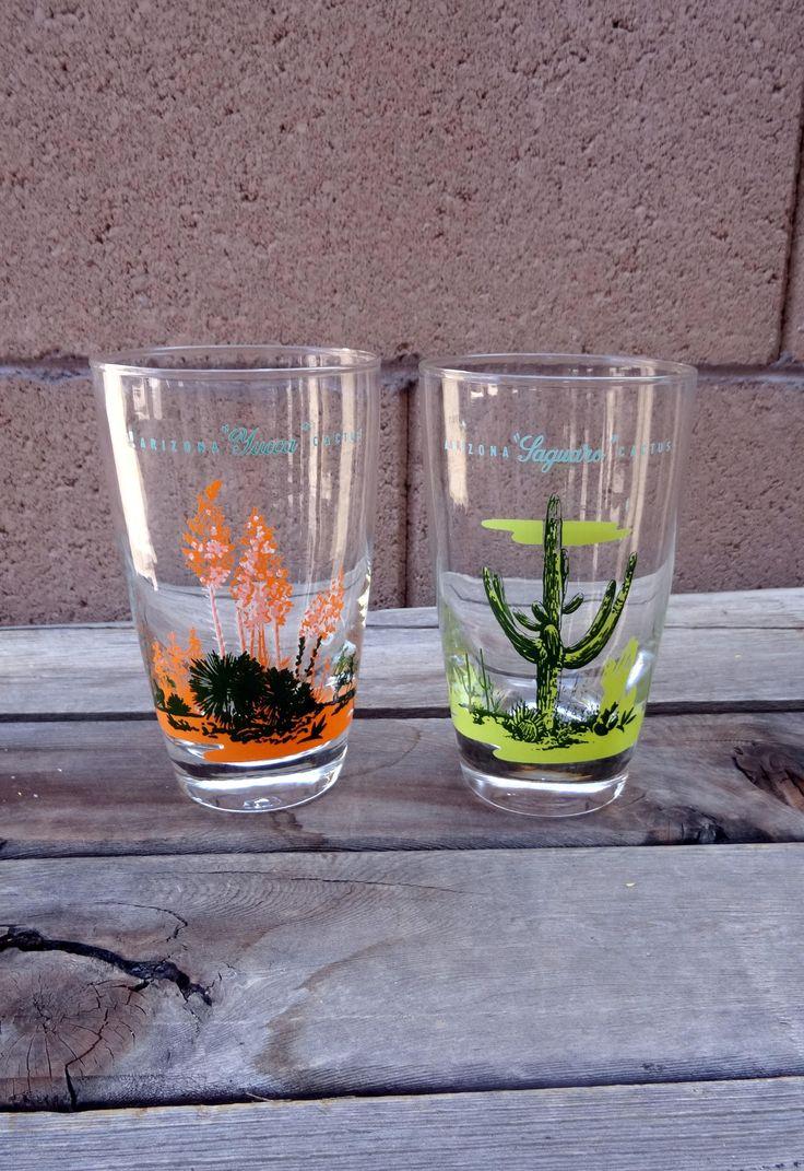 Best 25 Arizona Cactus Ideas On Pinterest Cactus