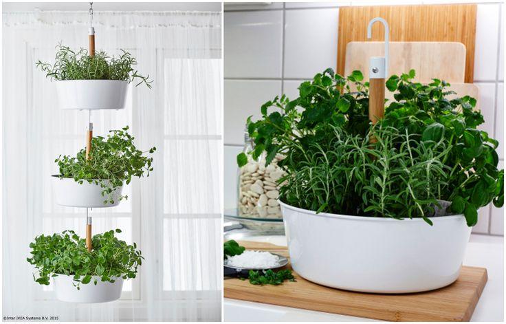 Atârnă ghivecele la fereastră și poți avea la îndemână arome proaspete atunci când găteşti pentru cei dragi. www.IKEA.ro/ghiveci_suspendat_BITTERGURKA